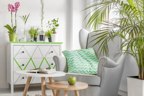 Declutter and Turn Your Home Green