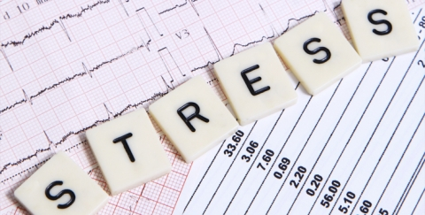 Mental Health Tips for the Stressful Periods in Your Life