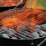 Gas VS Charcoal Grills – Which is Better for the Environment