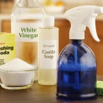 Green House Cleaning Products