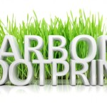 Simple Ways to reduce Your Carbon Footprint