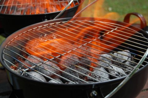 Gas VS Charcoal Grills – Which is Better for the Environment Picture