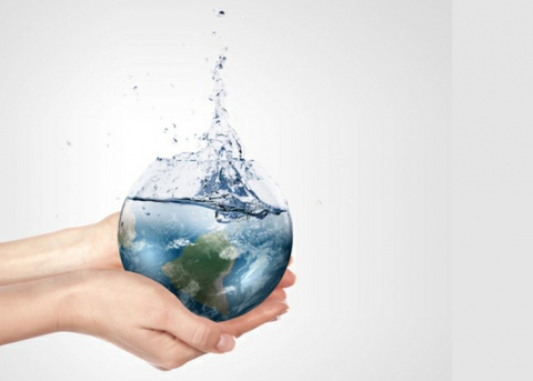 Living green - tips to save water