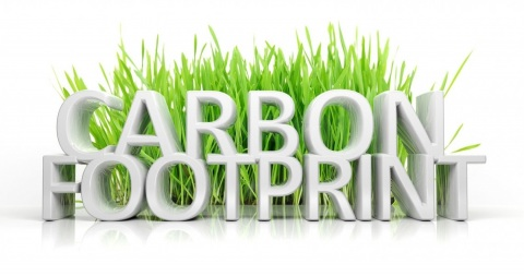 Simple Ways to reduce Your Carbon Footprint Picture